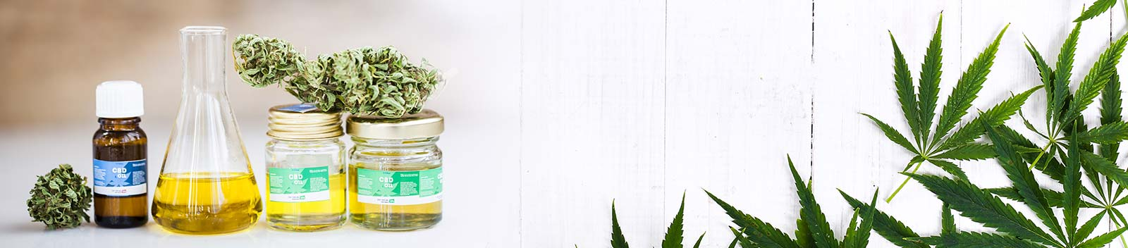 Full Range of Human and Pet-Friendly CBD Oils & Tinctures In-Store Now